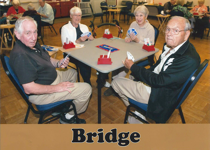 Bridge for Beginners @ Elwin Mussell Center